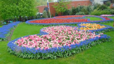najkrajšia záhrada